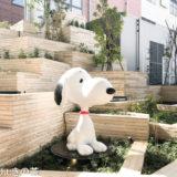 南町田のグランベリーパークは犬連れOK※ワンコが喜ぶお店あり!